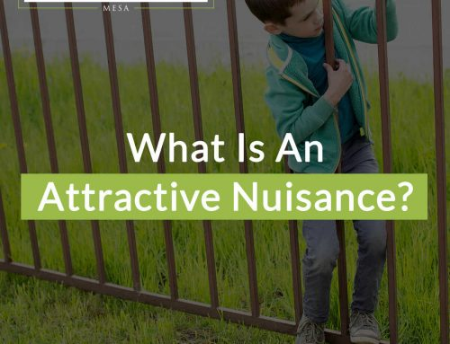 What Is An Attractive Nuisance?